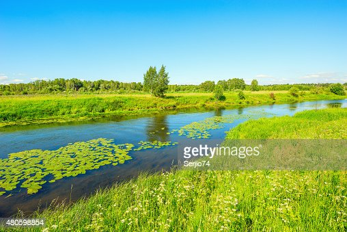 River and the meadow. : Stock Photo