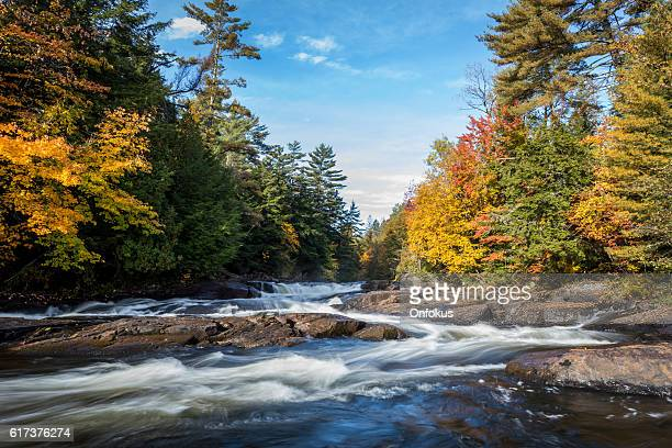 River and Waterfall in Autumn Forest Nature, Quebec, Canada