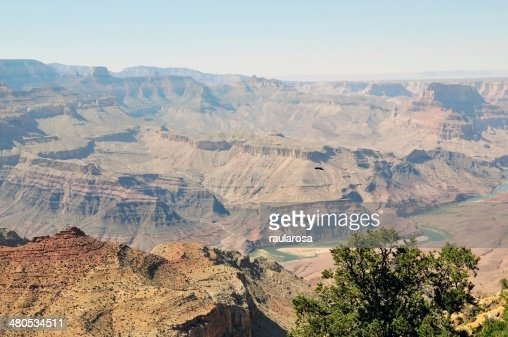 River at Grand Canyon National Park : Stock Photo