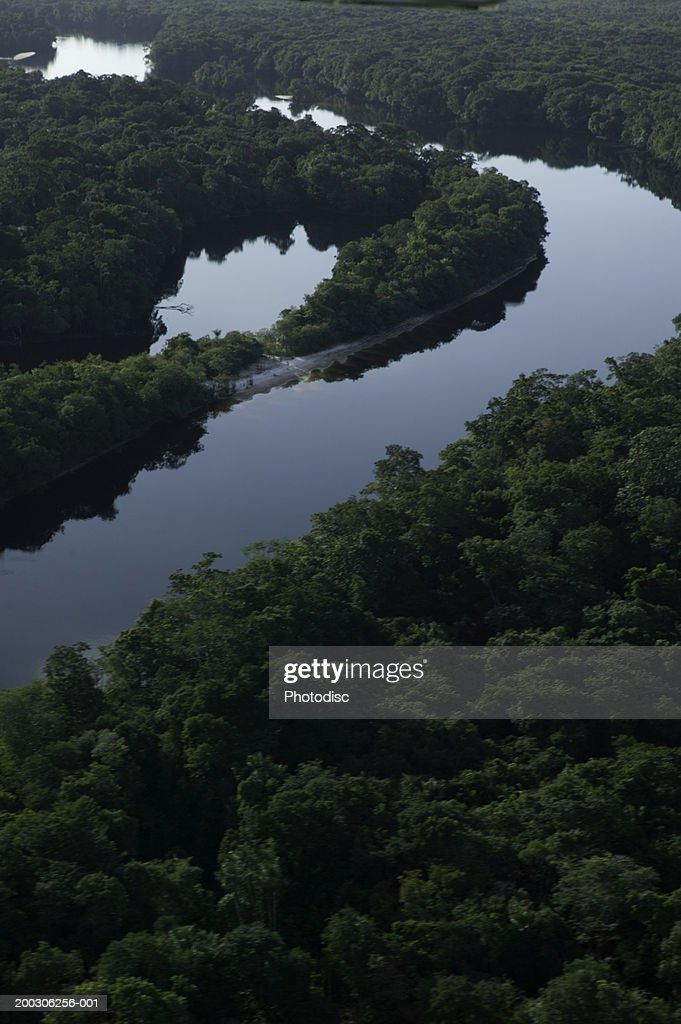 River bend in forest, aerial view : Stock Photo