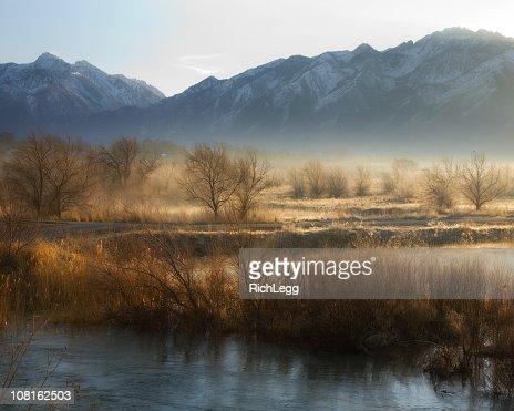 River Bottom in the Morning