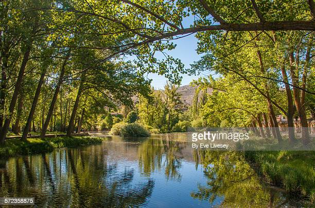 River Duero and reflections