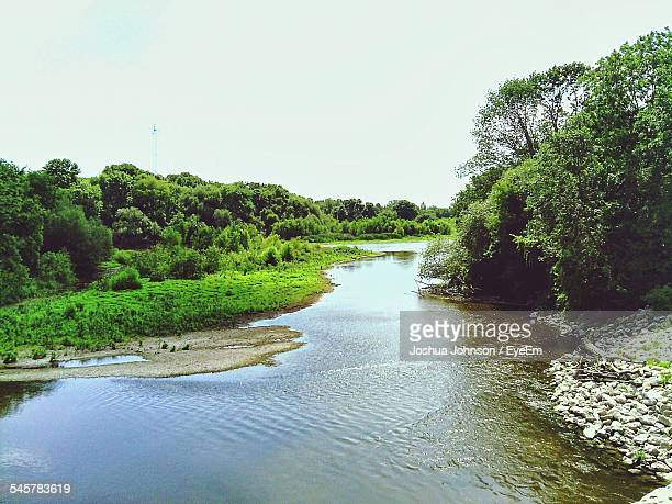 River Flowing At Forest Against Clear Sky