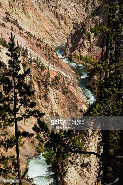 River flows thru Grand Canyon of the Yellowstone