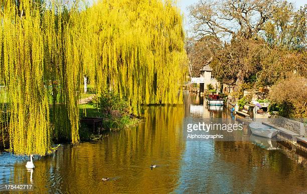 川の素晴らしいウーズ Godmanchester