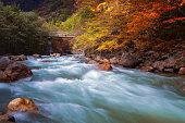 Autumn scene on mountain with river.