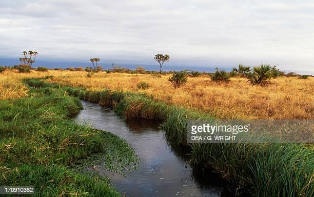 A river in Meru National Park Kenya