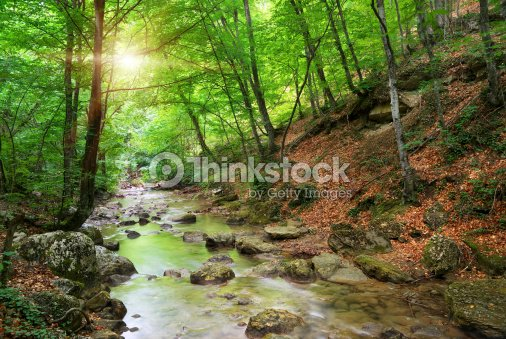 River in mountain : Stock Photo