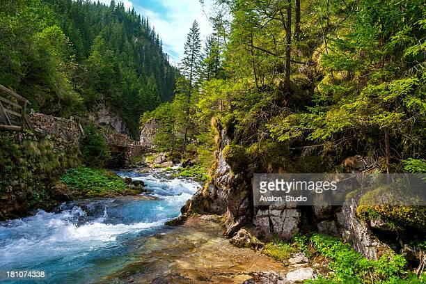 River in Polish mountains