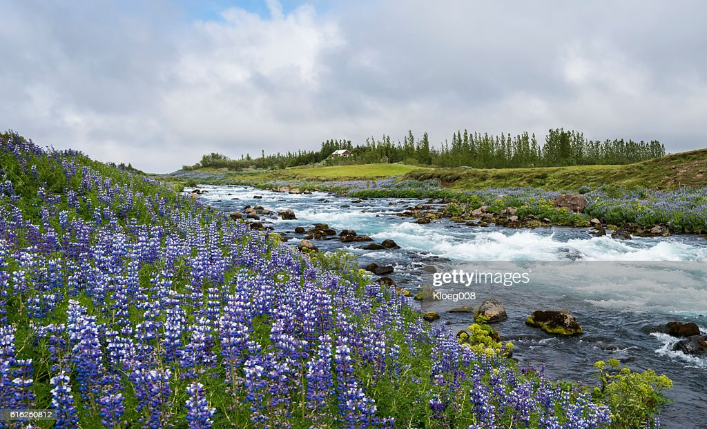 River in Sudurland, Iceland : Stock-Foto