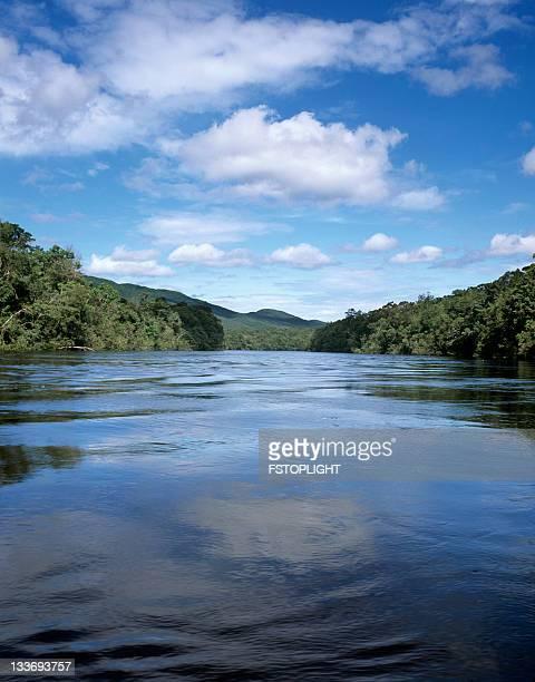 Fluss im Dschungel