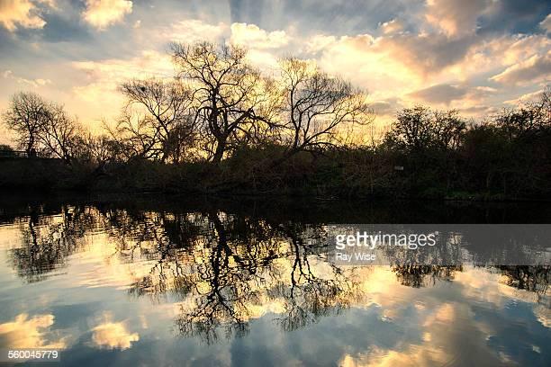 River Lee mirror