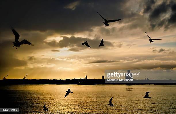 River Mersey sunset