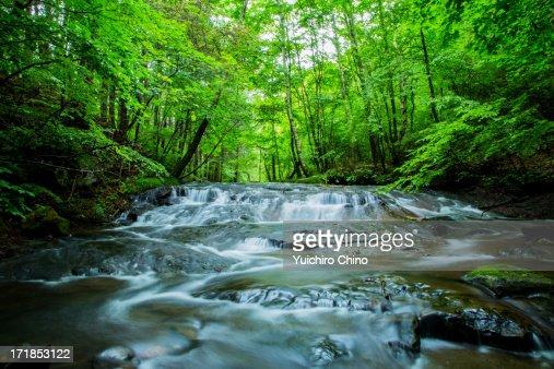 River Mountain : Stock Photo