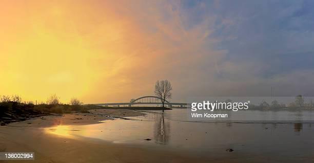 River Rhine, beach, tree and bridge