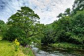 Wye River in the English Peak District, UK