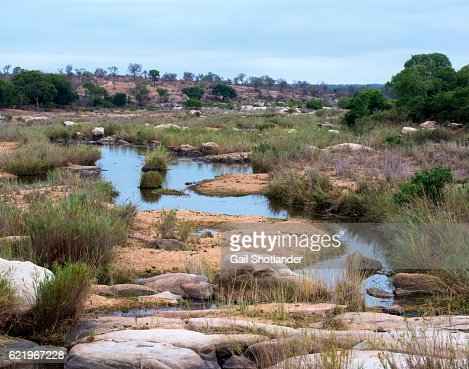 River Winding in Kruger National Park
