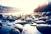 River with pebbles in Polish forest