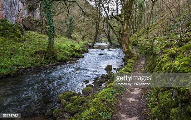 River Wye in Cheedale, Derbyshire