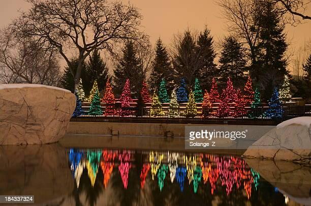 Riverside Christmas decorations