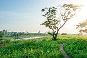 Riverside in the Tama River. Border between prefectures of Tokyo-to and Kanagawa-ken.