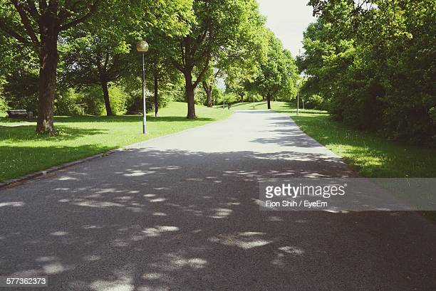 Road Amidst Trees At Park