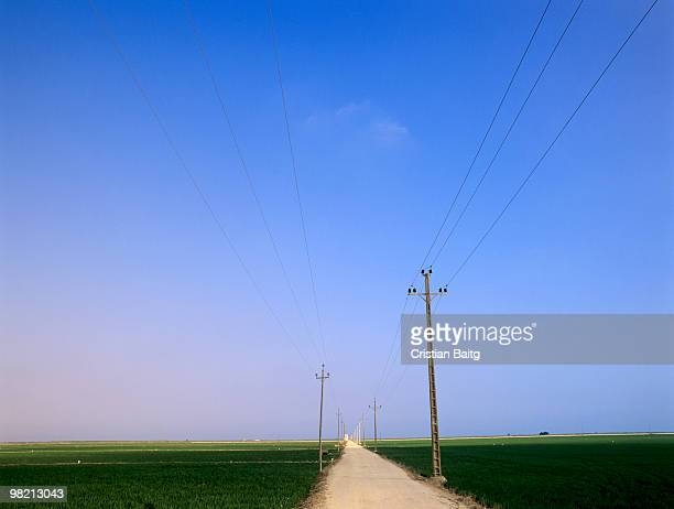 Road and power poles through green fields