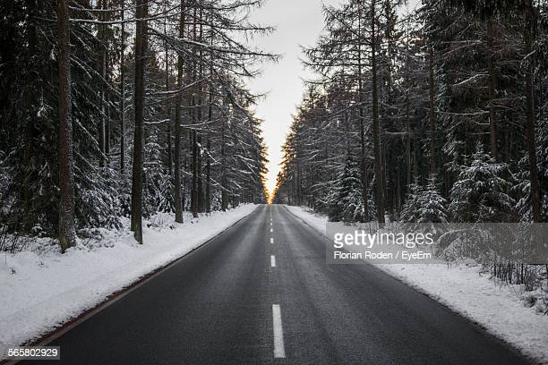 Road Between Snow Covered Trees On Field
