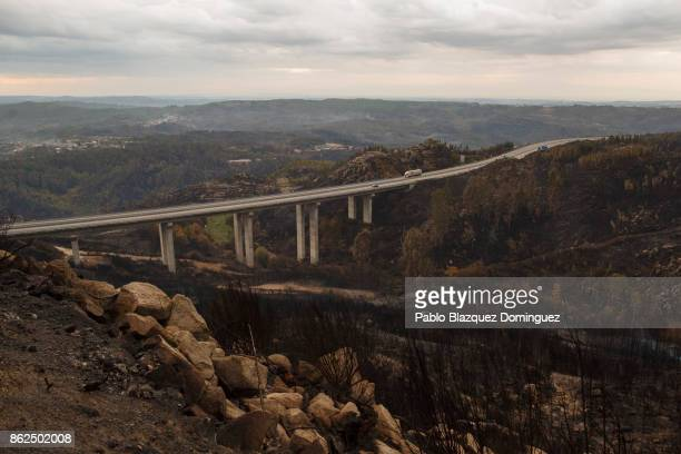 A road crosses a landscape of burnt trees near Vouzela on October 17 2017 in Viseu region Portugal At least 41 people have died in fires in Portugal...