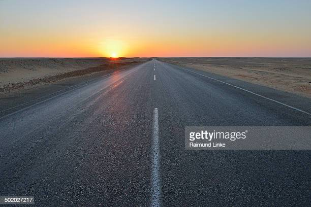 Road in Desert at Sunset