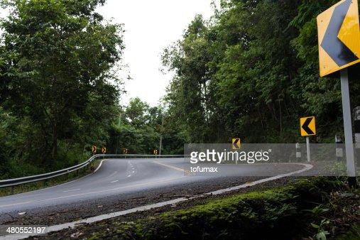 Estrada em forrset : Foto de stock