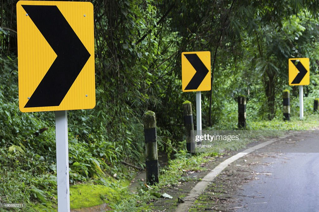road en forrset : Foto de stock