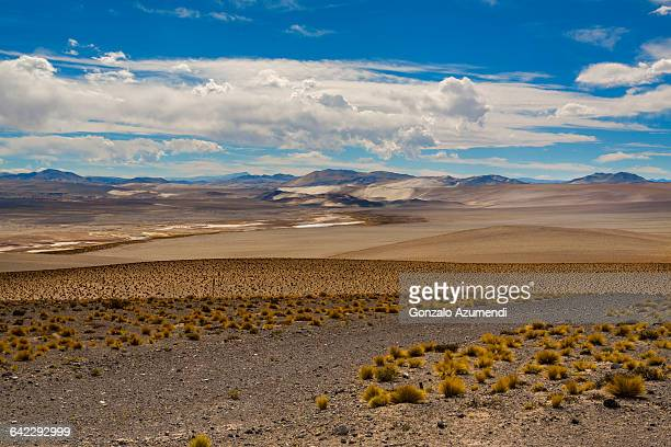 Road in Laguna Blanca in Argentina