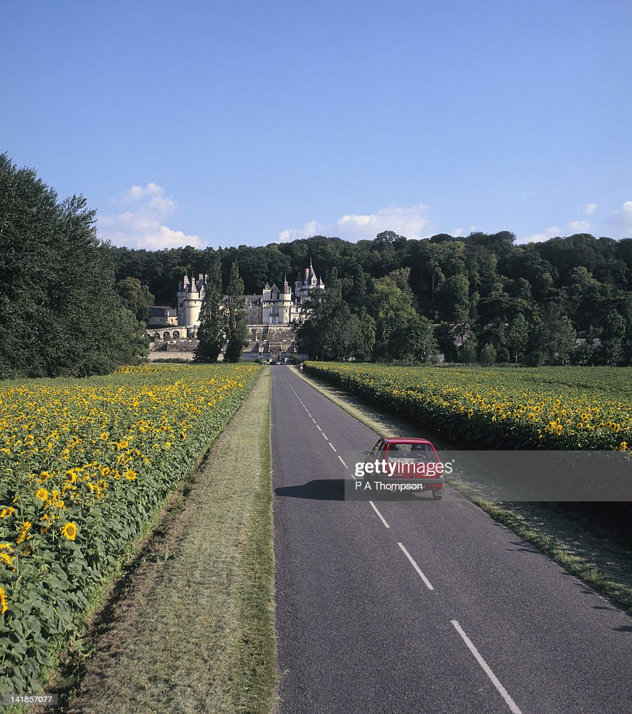 Road leading to Chateau Usse, Loire Valley, France