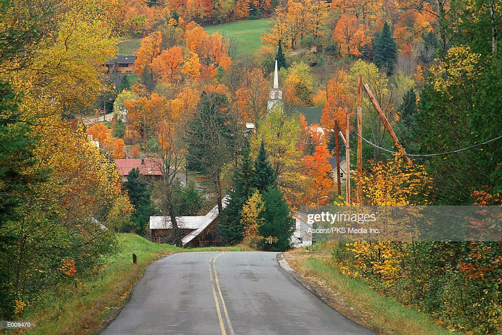 Road leading to village in autumn : Stock Photo