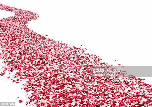 Road made of rose petals