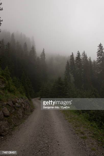 Road Passing Through Foggy Weather