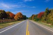 Road Running Between Autumn Trees