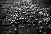 Road Salt in Black & White