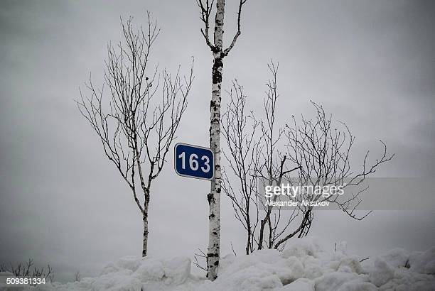 A road sign '163 km' is seen on a birch on a winter road at a market near the Siberia village of Yangutum on February 2 2016 in Siberia Russia Local...