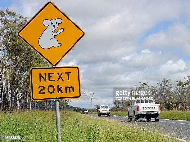 A road sign on the Bruce Highway south of Mackay warns drivers of koalas crossing the road for the next 20 kms on January 7 2011 AFP PHOTO / Torsten...