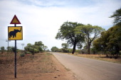 A road sign warns drivers from elephant road crossing on November 19 in Hwange National Park in Zimbabwe AFP PHOTO MARTIN BUREAU