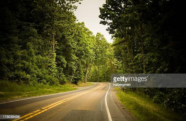 Straße durch den Wald