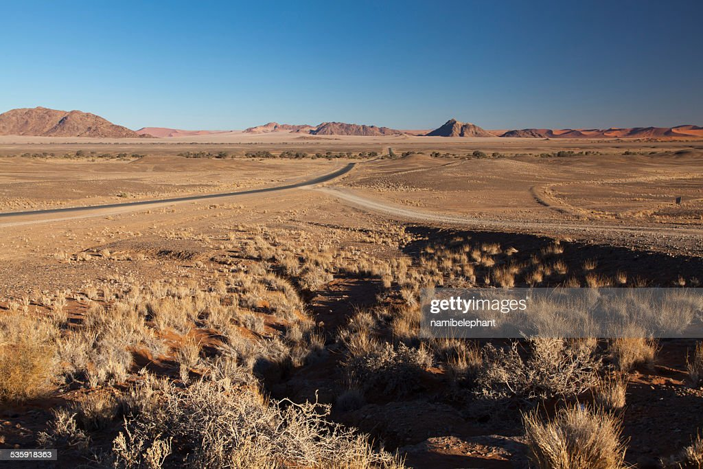 road through the desert : Stock Photo