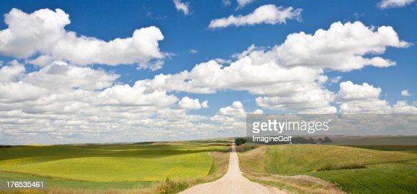 Road から平原