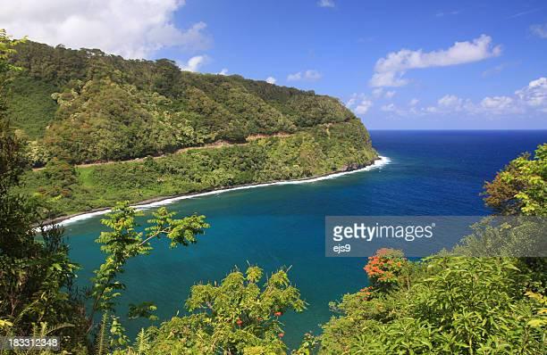 マウイ島ハナへの道を行けば、ハワイ太平洋の美しい