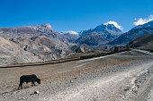 Road to Muktinath, Nepal