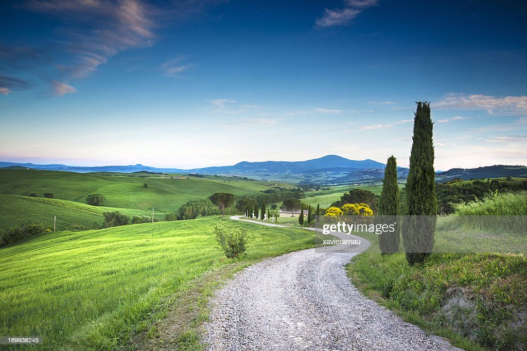 Road to the beauty Tuscany