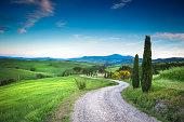 Road to the beauty Tuscany