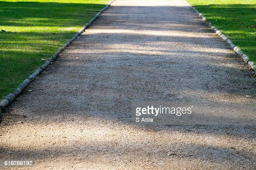 Road with shades on it in a park : Stock Photo